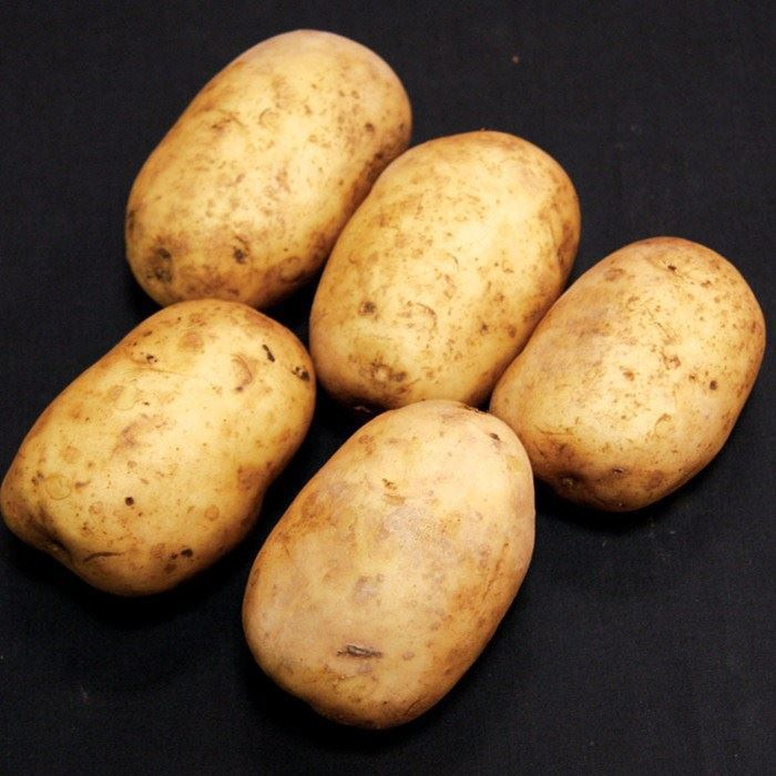 0014048_pentland-javelin-1kg-potatoes.jpeg