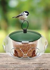 Small_Bird_Feeder.jpg